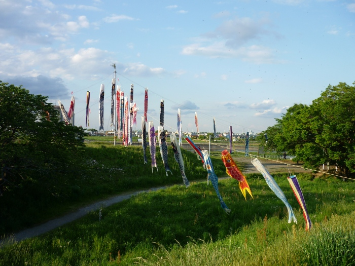 Koinobori at Noborito 2