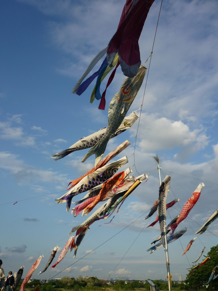 Koinobori at Noborito 4