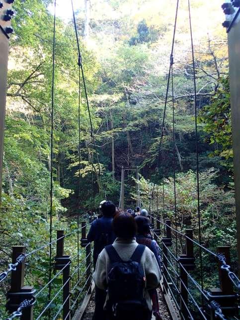 Mt Takao in autumn